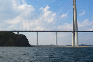 russky bridge vladivostok during Seaside tour of Vladivostok